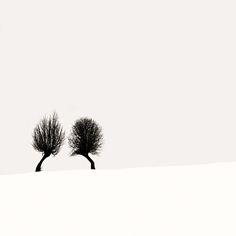 javiercarrete: Gossip, photography by Ebru Sidar