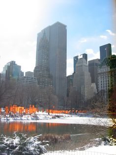 Central Park in Manhattan, New York City, March 2005. Christo's artwork was slowly being taken down, but there was plenty for us to see still! The contrast of the orange gates and fabric against the white snow was phenomenal.