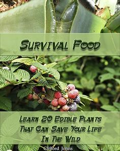 Survival Food: Learn 20 Edible Plants That Can Save Your Life In The Wild: (Survival In The Wilderness, Books Preppers) (How To Survive Natural Disaster Book 1), http://www.amazon.com/gp/product/B06XHNBPZT/ref=cm_sw_r_pi_eb_GQaYybCGWACZ5