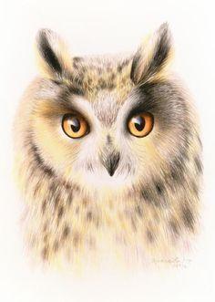 'Owl' by Hrapkova Svetlana