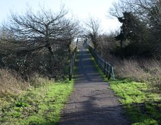Bridge over Lakes Fishers Green,Lea Valley Park