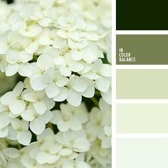 монохромная зеленая цветовая палитра, монохромная цветовая палитра, оттенки зеленого, оттенки салатового, подбор цвета, салатовый и зеленый, тёмно-зелёный, цвет зелени, цвет свежей зелени, цвет травы, цветовое решение для дизайна, цветовые