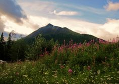 Kenai Peninsula, Alaska  Kenai Princess Wilderness Lodge   <3