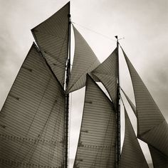Sails of the Mariette