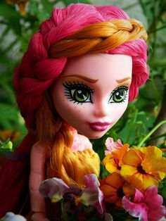 1000 images about dolls on pinterest monster high