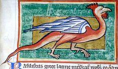 Medieval Bestiary : Basilisk Gallery