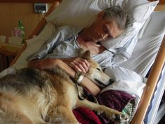 Pet therapy is one of the greatest therapies a person can receive.