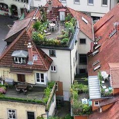 Rooftop in Sthlm
