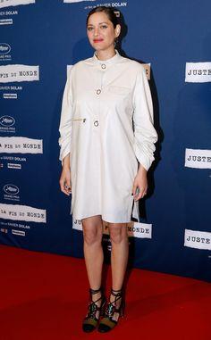 Marion Cotillard Breaks Silence on Alleged Involvement in Brad Pitt and Angelina…