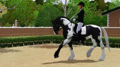 cute sims 3 horses | Being all cute - Serena loves to lay beside Cilla in the field.
