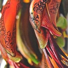 Image result for flax design painting nz