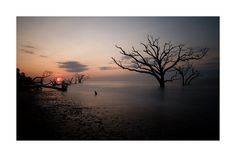 Edisto Beach SC by JPKarner