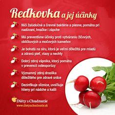 Reďkovka a jej účinky na #chudnutie a #zdravie človeka http://www.dietyachudnutie.sk/infografiky/redkovka-a-jej-ucinky-na-chudnutie-a-zdravie-cloveka/
