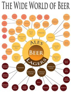 the-wide-world-of-beer-kins-of-beer-bira-çeşitleri-türleri