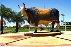 Memorial Touro Bandido - Foi o melhor touro de rodeio brasileiro reconhecido internacionamente por derrubar rapidamente os peoes  que tentavam montar nele, Bandido sofreu cancer de pele, proximo a regiao do olho esquerdo e morreu em 4 de janeiro de 2009, com 15 anos. Foi enterrado no Memorial do Peao, no Parque do Peao , em Barretos. - Sao Paulo
