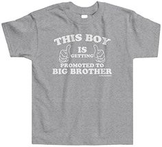 Threadrock Little Boys' This Boy Is Getting Promoted To Big Brother Toddler T-Shirt 2T Sport Gray