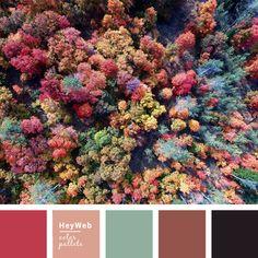 Color palette №6 | HeyWeb