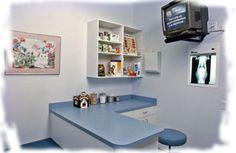 veterinary exam room - Google Search