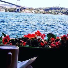 COFFEE OF THE DAY, COFFEE TIME, COFFEE BREAK, ISTANBUL TURKEY