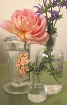Flowers in clear vases and glasses