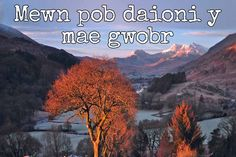 24 beautiful Welsh proverbs and sayings that show the language at its finest - Wales Online Man Humor, Girl Humor, Crush Quotes, Girl Quotes, Welsh Translation, Wales Language, Welsh Sayings, Learn Welsh, Cheating Quotes