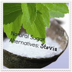 Looking for a natural sugar alternative?  Check out this article about Stevia.
