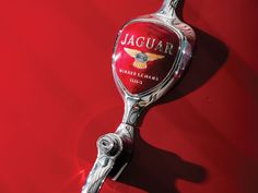 "1955 Jaguar XK 140 SE ""Heuber Roadster"""