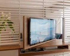 Image result for room divider tv