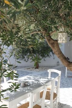 Greece - Olive trees and white patterned tiles Outdoor Rooms, Outdoor Gardens, Outdoor Living, Lazy Summer Days, Mediterranean Garden, Outside Living, White Gardens, Dream Garden, Garden Inspiration
