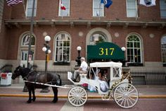 317 Rice Park! Love the horse drawn carriage! #317onRicePark #WeddingPhotographersMN #MinnesotaWeddingTransportation