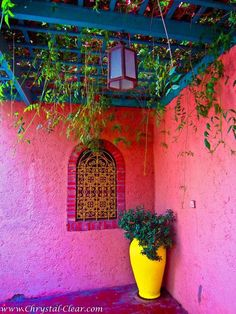 Marrakech Morocco - Jardin Majorelle - Red walls and yellow pot-Wouldn't paint my walls red/pink, but love the blue ceiling!