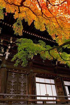 Shinnyodou, Kyoto by Toru Kona on 500px
