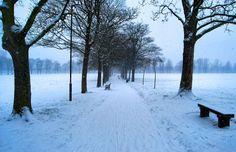 Victoria Park,Leicester