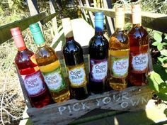 Cairn O'Mohr Fruit Wines as Featured on Paul Hollywood's Pies and Puds. Also have some festive flavours.