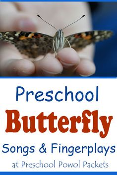 Use these fun preschool butterfly songs to teach butterfly science and math during preschool circle and singing time! Preschool Poems, Preschool Science Activities, Music Activities, Science Experiments, Spring Activities, Infant Activities, Learn Singing, Singing Time, Singing Lessons