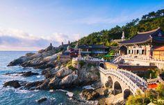 Remembering Happy Travel to South Korea Biz in 2018 1 Drones, Dji Drone, Aerial Photography, Travel Photography, Dji Phantom 4, Dji Spark, Lightroom Presets, Travel Photos, Around The Worlds