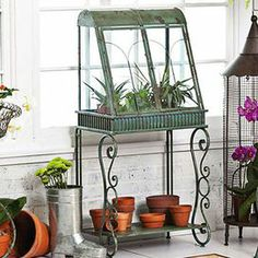 "Awash in an antiqued verdi green finish, this terrarium is an attractive addition to your greenhouse or covered porch.   Product: TerrariumConstruction Material: Metal and glassColor: Antiqued verdi green Features: Lower shelf Dimensions: 46.65"" H x 22.05"" W x 14.76"" D"