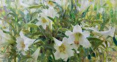 Spring Trumpet Lilies