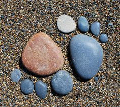 Got stones? Most of our gardens have stones and rocks that we could do without. Our gardens here at TGG are full of them. Hauling them away is backbreaking and expensive! Whether you have just... Read More