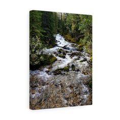 Photo print/Canvas/ Bumbling Brook/Nature/Art/Photography/Canada/Alberta/Wall Art/home/Decor Art Photography, Canada, Canvas Prints, Etsy Shop, Wall Art, Holiday Decor, Water, Home Decor, Gripe Water