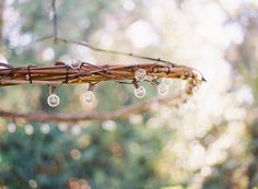 Lighting can make all the difference in setting the mood for outdoor gatherings. Thissimple chandelier is a cinch to make—all you'll need are branches from your garden and about$25 dollars …