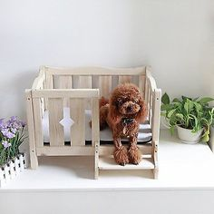 Dog Bed Use