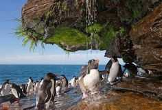 As mais impressionantes fotos da natureza - Bubunoni