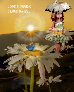 Good Morning Gif, Good Morning Greetings, Lovely Girl Image, Girls Image, World Gif, Beautiful Rose Flowers, Day For Night, Birthday Wishes, Daisy