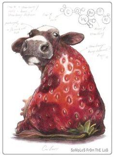 Rob Foote's plant/animal chimera drawings