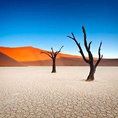 Deserto na Namíbia tem árvores mortas de 900 anos e dunas gigantes. Clima é tão seco que árvores não puderam se decompor e se petrificaram.  Contraste do céu azul com dunas vermelhas rende belas fotos. #namibia #deadvlei #viagem #turismo #tourism #trip #travel #roteiros #roteirosdeexperiencia #kuryalaviagens