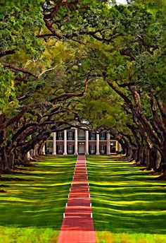 Oak Alley Plantation- Louisiana. I love the stately grandeur of this estate. Sure, the slavery aspect isn't as great, but nevertheless it's a beautiful place.