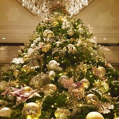O #Christmas Tree, O Christmas Tree. How lovely are your branches! - at Island Shangri-La, #HongKong. #ShangriLaLaLa
