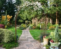The flower and form of climbing vines add highlights to the garden throughout the growing season.