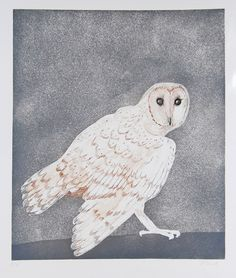 Barn owl signed print by Elisabeth Frink available to buy. Other signed prints by Elisabeth Frink available from Dominic Guerrini, London UK. Animal Projects, Baby Owls, Bird Art, Owl Art, Sign Printing, Animal Paintings, Pet Birds, Printmaking, Illustration Art